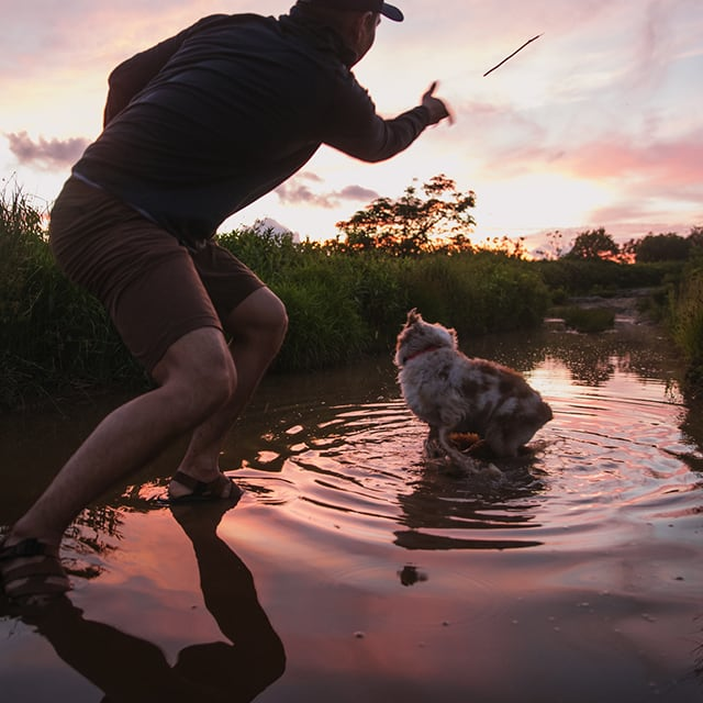 Person stading in a creek, throwing a stick for his dog
