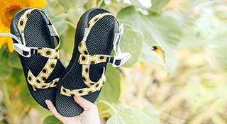 Hand holding a pair of Sunflower custom Chaco sandals.