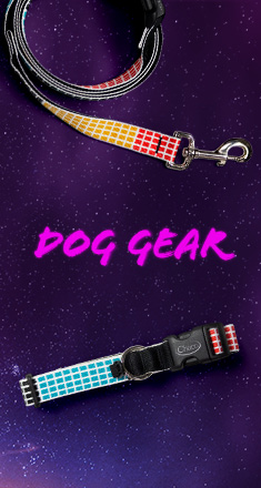Topo Chaco Collaboration Dog Gear