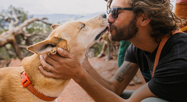 Man gets a kiss from his dog whose wearing a Chaco dog collar.
