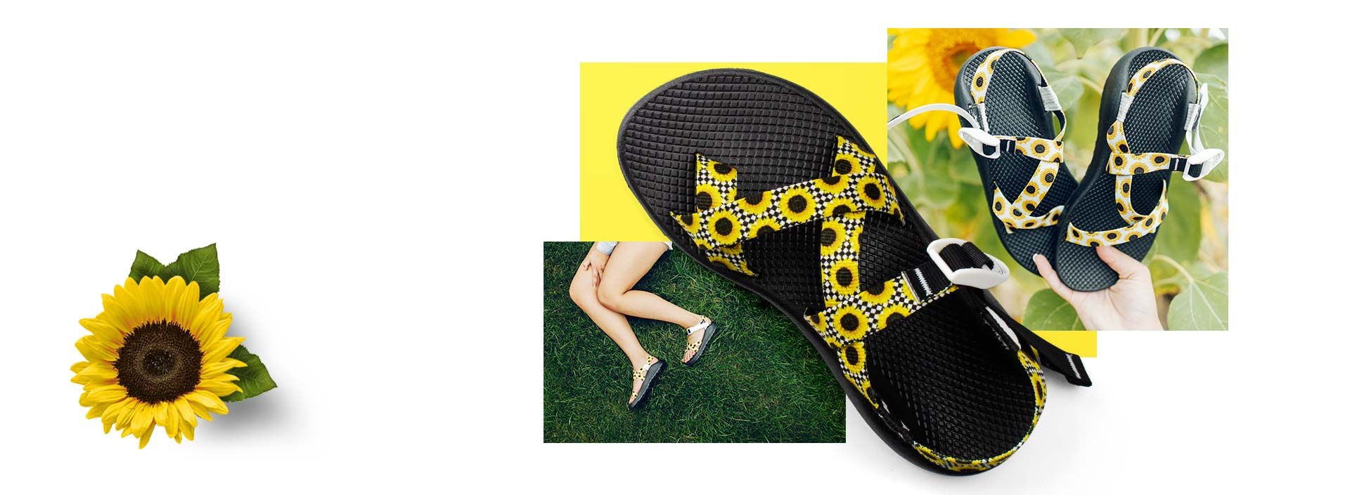 Sunflower and sunflower Chaco sandals in yellow, black and white.