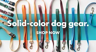 Solid-color dog gear. Shop now.