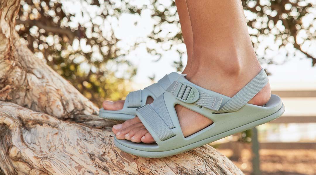Person climbing a tree, wearing aqua gray chillos sport sandals.