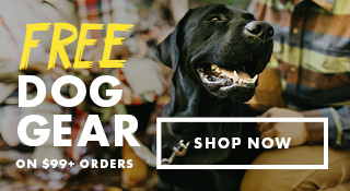 Free Dog Gear on $99+ Orders | Shop Now